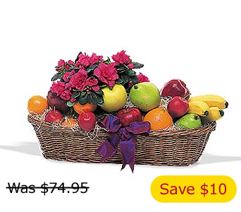 Plant and Fruit Basket, flowershopping.com