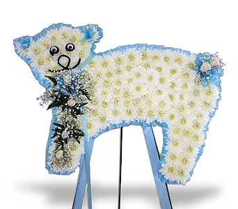 Blue Lamb in Nashville TN, Flowers By Louis Hody