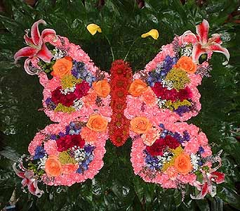 Stein Butterfly - Special Design Piece in Burlington NJ, Stein Your Florist