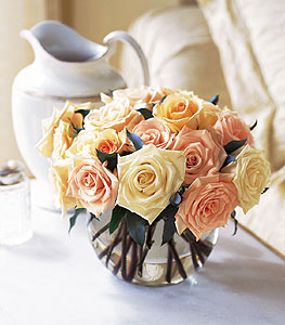 Perfect Pastel Roses in Norristown PA, Plaza Flowers
