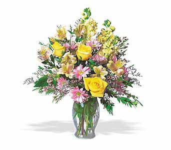 Wishing You Well in Norristown PA, Plaza Flowers