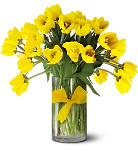 Teleflora's Sunny Yellow Tulips - Premium in Bloomington IL, Beck's Family Florist