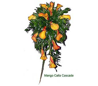 Mango calla cascade in Perry Hall MD, Perry Hall Florist Inc.