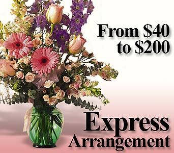 Express Arrangement in Norristown PA, Plaza Flowers