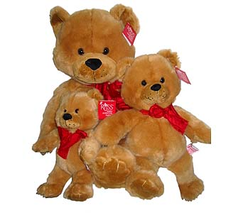 PLUSH116 Beary Soft Russ Bear Family in Oklahoma City OK, Array of Flowers & Gifts