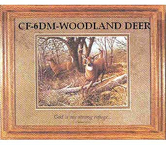 e-3 - woodland deer in Cheswick PA, Cheswick Floral