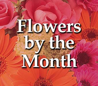 Flowers By the Month3 Months in Deerfield IL, Swansons Blossom Shop