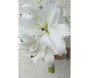 Fragrant Lilies in West Bloomfield MI, Happiness is...Flowers & Gifts