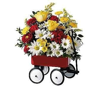 Red Wagon Bouquet in Columbus OH, OSUFLOWERS .COM