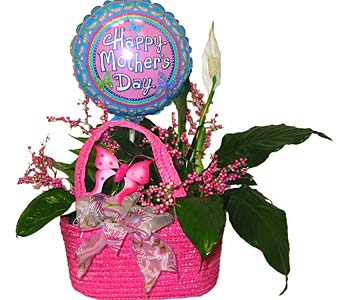 MDGP10 ''Mom's Handbag Planter'' in Oklahoma City OK, Array of Flowers & Gifts