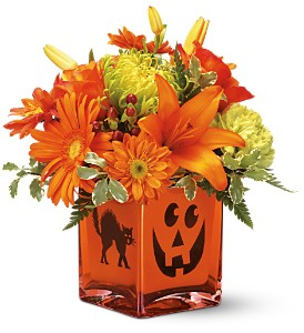 Teleflora's Creepy Cube Bouquet in Oklahoma City OK, Array of Flowers & Gifts