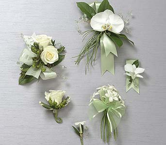 Sea Mist Corsage & Boutonniere C ollection in Portland ME, Dodge The Florist