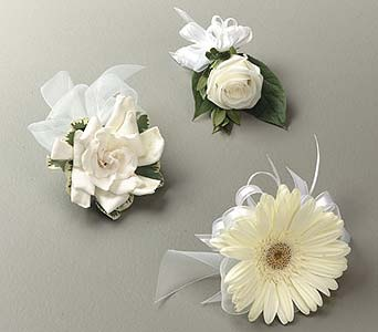 Simple Elegance Corsage Collection in Portland ME, Dodge The Florist