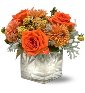 Teleflora's Perfect Orange Harmony in Winooski VT, Sally's Flower Shop