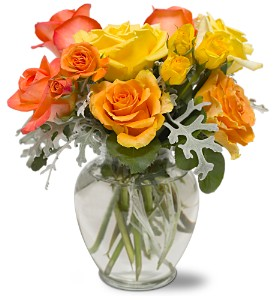 Butterscotch Roses in Metairie LA, Villere's Florist