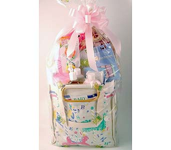 Baby Girl Gift Bag in Salisbury MD, Kitty's Flowers