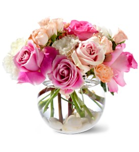 Teleflora's Roses on the Rocks in Hialeah FL, Bella-Flor-Flowers