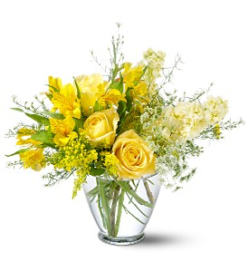 Teleflora's Delicate Yellow in Winooski VT, Sally's Flower Shop