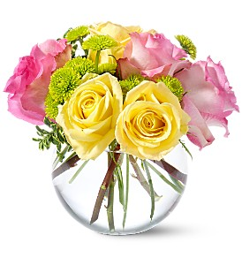 Teleflora's Pink Lemonade Roses in Santa Monica CA, Edelweiss Flower Boutique