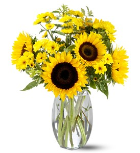 Teleflora's Sunflower Splash in Asheboro NC, Burge Flower Shop