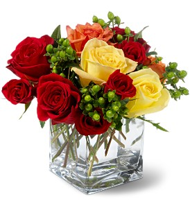 Teleflora's Carousel Roses in Bend OR, All Occasion Flowers & Gifts