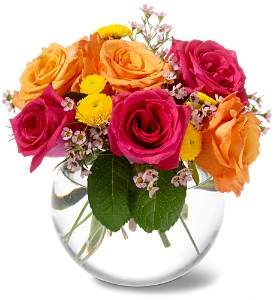 Teleflora's Rose Bliss in Bend OR, All Occasion Flowers & Gifts