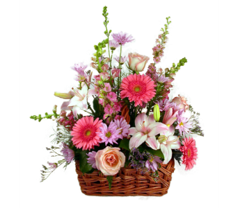 Basket of Pink in Indianapolis IN, McNamara Florist