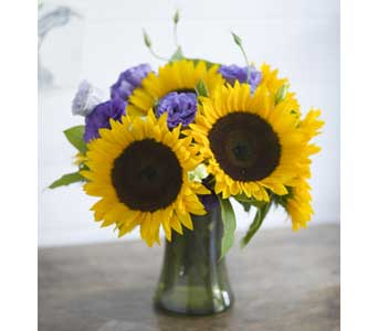 Sunflower Smile in Santa Clara CA, Citti's Florists