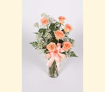 Half Dozen Peach Roses Vased in Southampton PA, Domenic Graziano Flowers