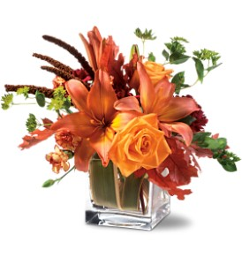 Teleflora's Orange Spice in Moline IL, K'nees Florists