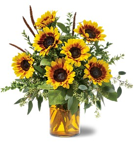 Sunrise Sunflowers in Melbourne FL, Petals Florist