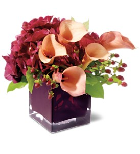 Teleflora's Calla Classique in Washington IA, Wolf Floral, Inc