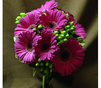 Fuchsia Gerbera and Berries in Massapequa Park NY, Bayview Florist & Montage  1-800-800-7304