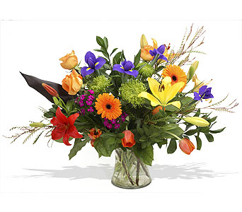 Sympathy Arrangement - Highlands Ranch Colorado