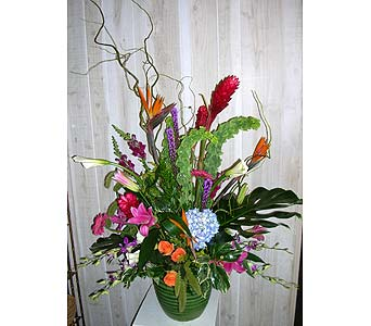 Aloha in Dallas TX, Petals & Stems Florist