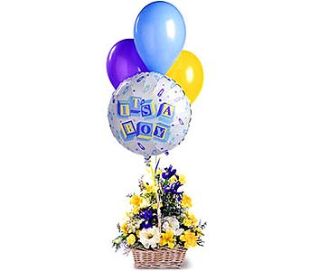 FF63B ''Blooms & Balloons for Him'' in Oklahoma City OK, Array of Flowers & Gifts