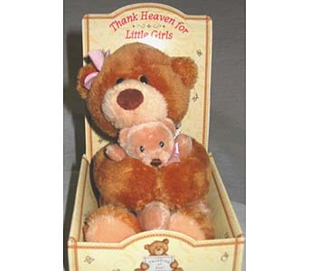 PLUSH110G ''Thank Heaven for Little Girls'' Bear in Oklahoma City OK, Array of Flowers & Gifts