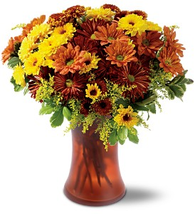 Country Chrysanthemums in Chicago IL, Yera's Lake View Florist