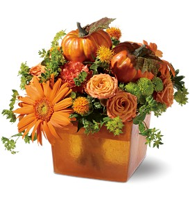 Pumpkin Spice in Oklahoma City OK, Array of Flowers & Gifts