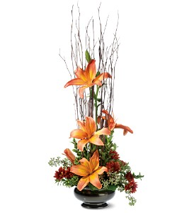 Zen Lilies in Kingsville ON, New Designs