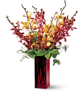 Teleflora's Orchid Splendor in Chicago IL, Yera's Lake View Florist