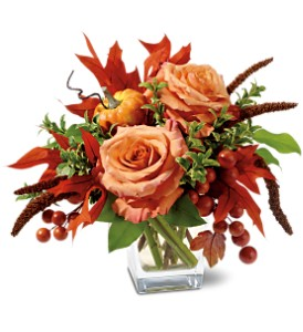 Petals and Pumpkin in McAllen TX, Bonita Flowers & Gifts
