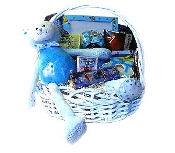 Bundle of Joy Baby Basket in Raritan NJ, Angelone's Florist - 800-723-5078