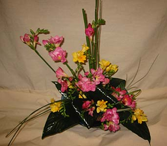 Exotica's Exotic Bow in Fairfax VA, Exotica Florist, Inc.