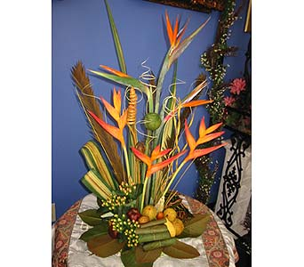 Exotica's Tropical Paradise in Fairfax VA, Exotica Florist, Inc.