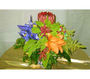 Exotica's Simply Original in Fairfax VA, Exotica Florist, Inc.