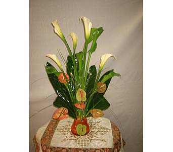 Exotica's Tropical Elegance in Fairfax VA, Exotica Florist, Inc.