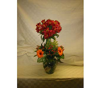 Exotica's Sunny and Bright in Fairfax VA, Exotica Florist, Inc.