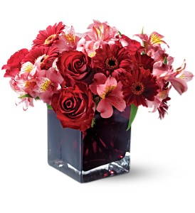 Teleflora's Wild Berry in Oklahoma City OK, Array of Flowers & Gifts