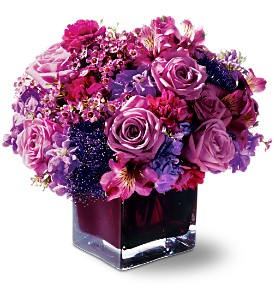 Teleflora's Plum Paradise in Fort Collins CO, Audra Rose Floral & Gift